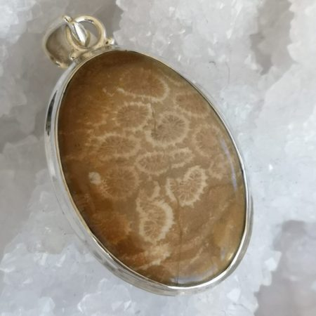 Fossil Coral Pure Energy Healing Crystal Pendant